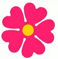 fiori4